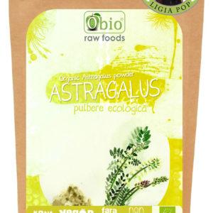 Astragalus pulbere raw bio 125g