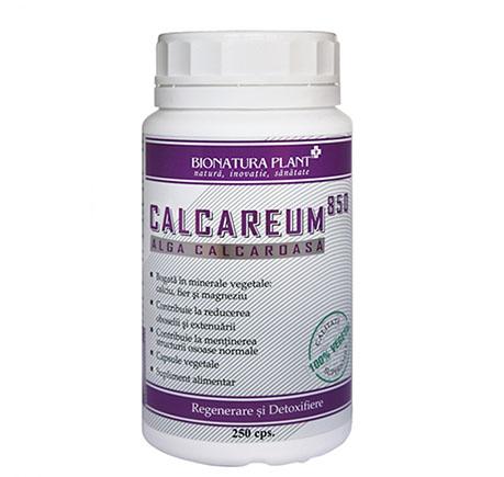 Calcareum 850 - 250 capsule