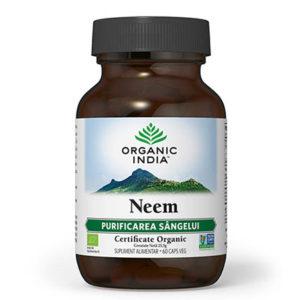 Neem | Antibiotic si Antifungic Natural