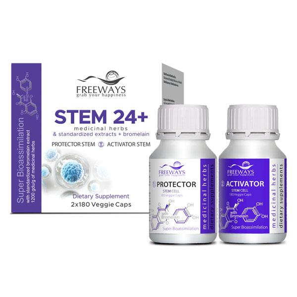 stem24-freeways